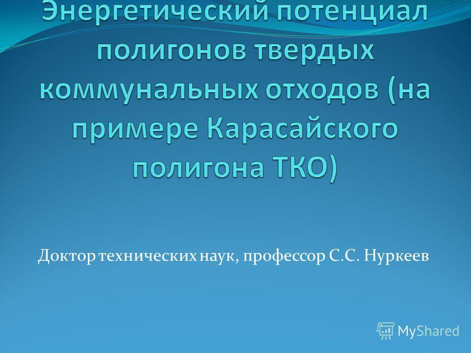 Доктор технических наук, профессор С.С. Нуркеев