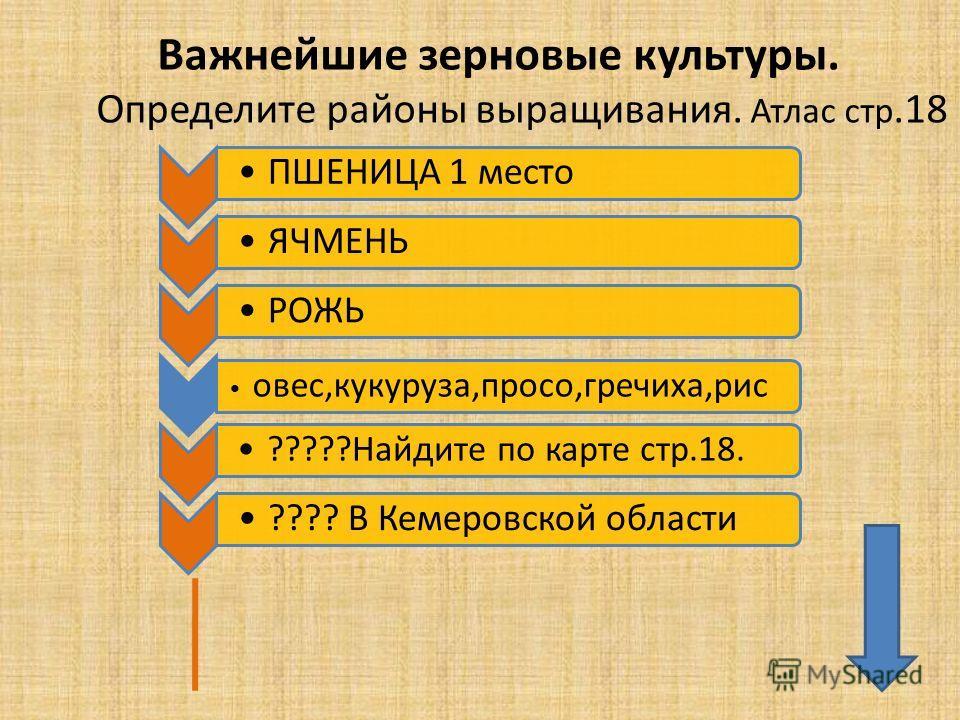 Основные районы выращивания ржи 79
