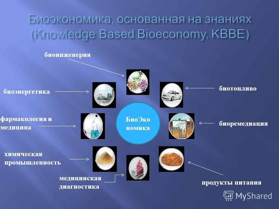 биоинженерия Био Эко номика биоэнергетика фармакология и медицина химическая промышленность медицинская диагностика продукты питания биоремедиация биотопливо