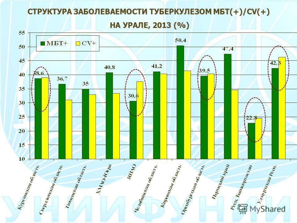 СТРУКТУРА ЗАБОЛЕВАЕМОСТИ ТУБЕРКУЛЕЗОМ МБТ(+)/CV(+) НА УРАЛЕ, 2013 (%)