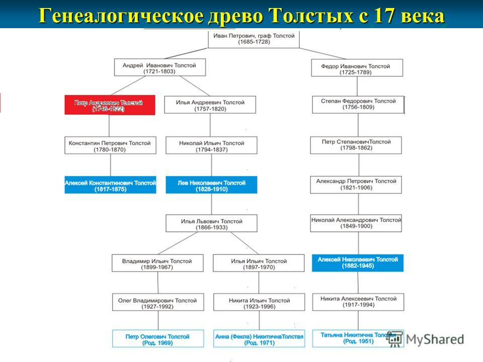 Генеалогическое древо Толстых с 17 века