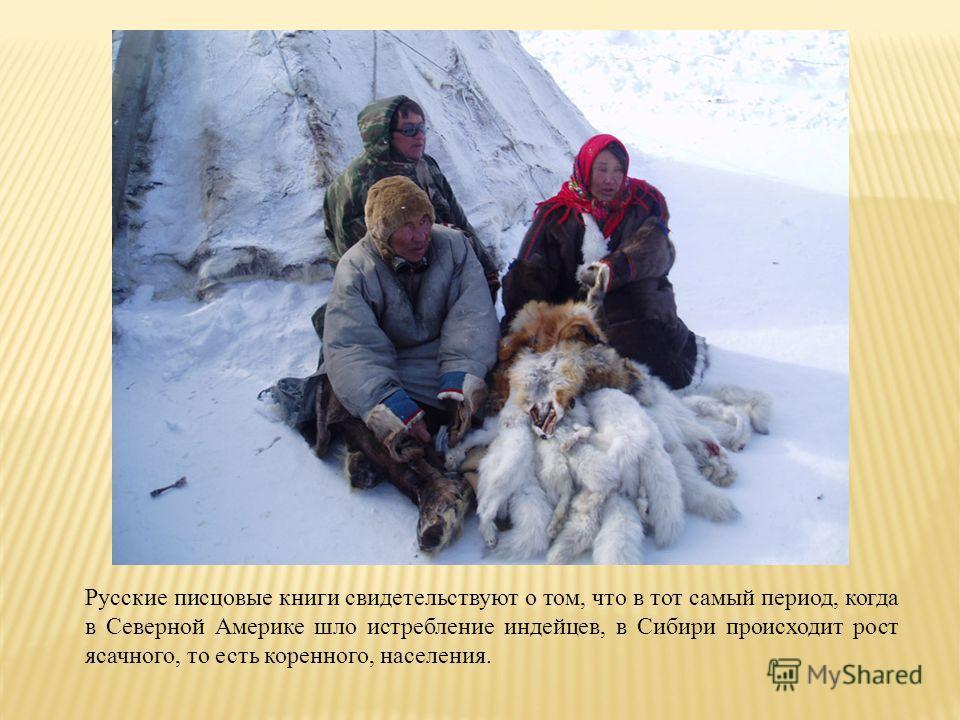 Русские писцовые книги свидетельствуют о том, что в тот самый период, когда в Северной Америке шло истребление индейцев, в Сибири происходит рост ясачного, то есть коренного, населения.