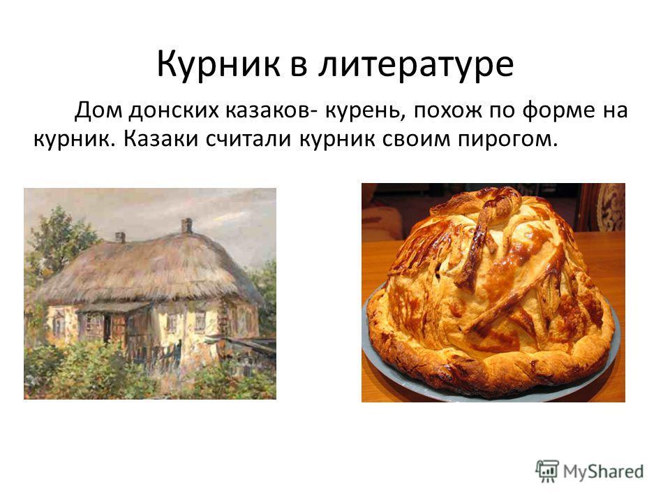 Курник в литературе Дом донских казаков- курень, похож по форме на курник. Казаки считали курник своим пирогом.
