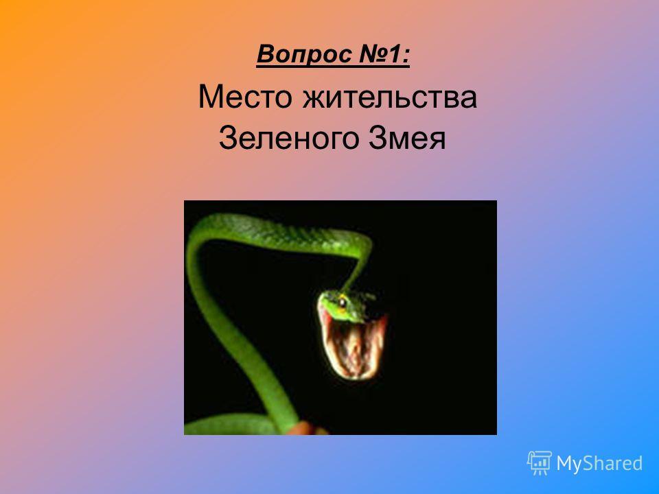 Вопрос 1: Место жительства Зеленого Змея
