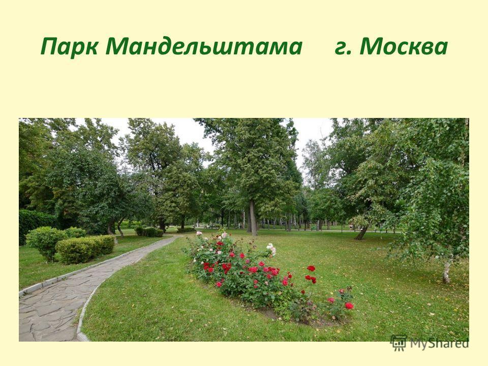 Парк Мандельштама г. Москва