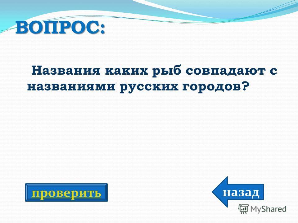 ВОПРОС: Названия каких рыб совпадают с названиями русских городов? назад проверить