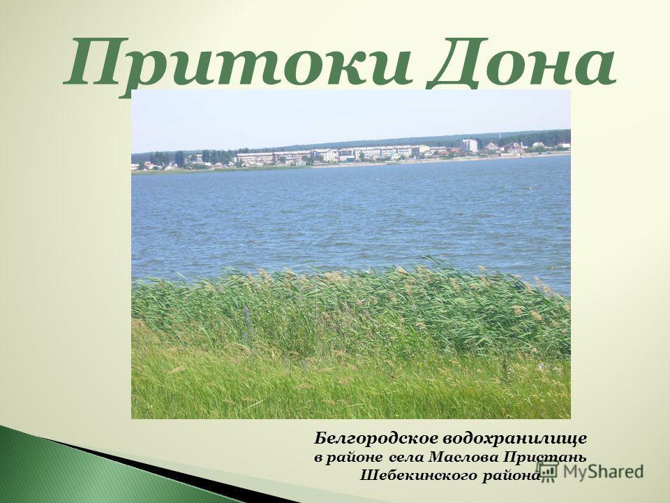 Притоки Дона Белгородское водохранилище в районе села Маслова Пристань Шебекинского района