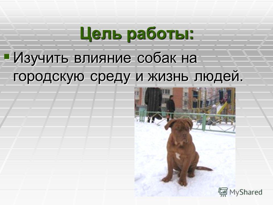 Цель работы: Изучить влияние собак на городскую среду и жизнь людей. Изучить влияние собак на городскую среду и жизнь людей.