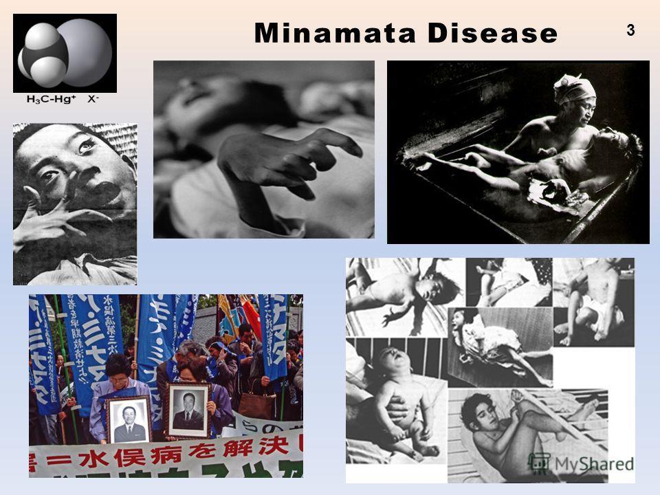 Minamata Disease 3
