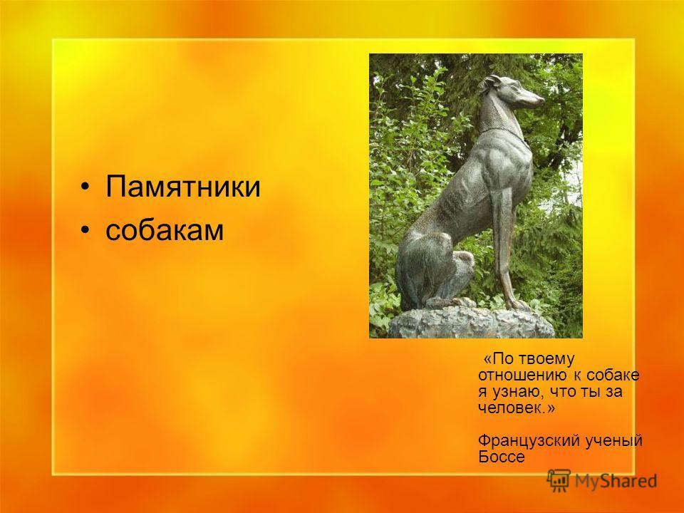 Памятники собакам «По твоему отношению к собаке я узнаю, что ты за человек.» Французский ученый Боссе