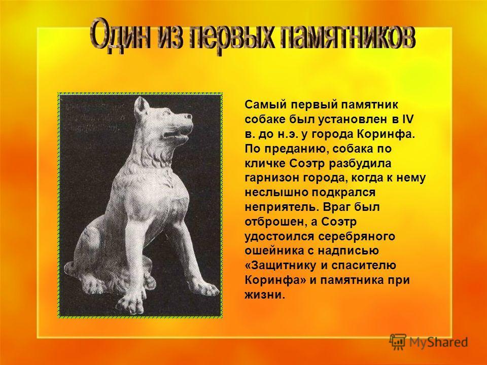 Самый первый памятник собаке был установлен в IV в. до н.э. у города Коринфа. По преданию, собака по кличке Соэтр разбудила гарнизон города, когда к нему неслышно подкрался неприятель. Враг был отброшен, а Соэтр удостоился серебряного ошейника с надп