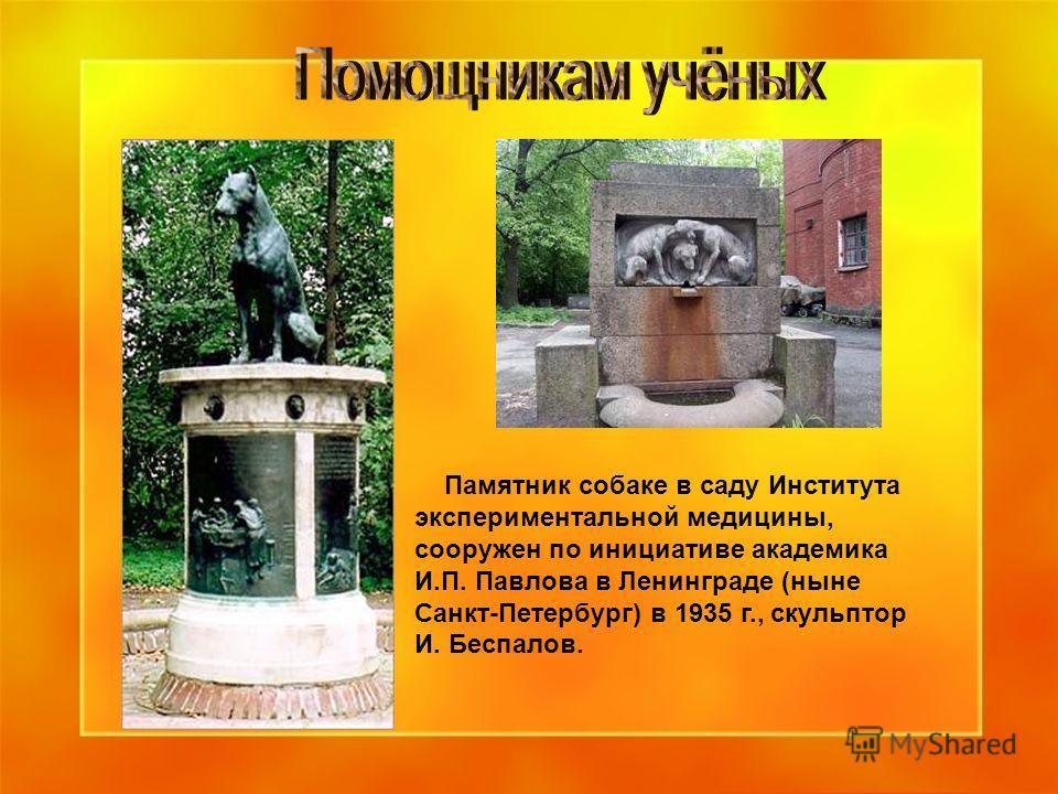 Памятник собаке в саду Института экспериментальной медицины, сооружен по инициативе академика И.П. Павлова в Ленинграде (ныне Санкт-Петербург) в 1935 г., скульптор И. Беспалов.