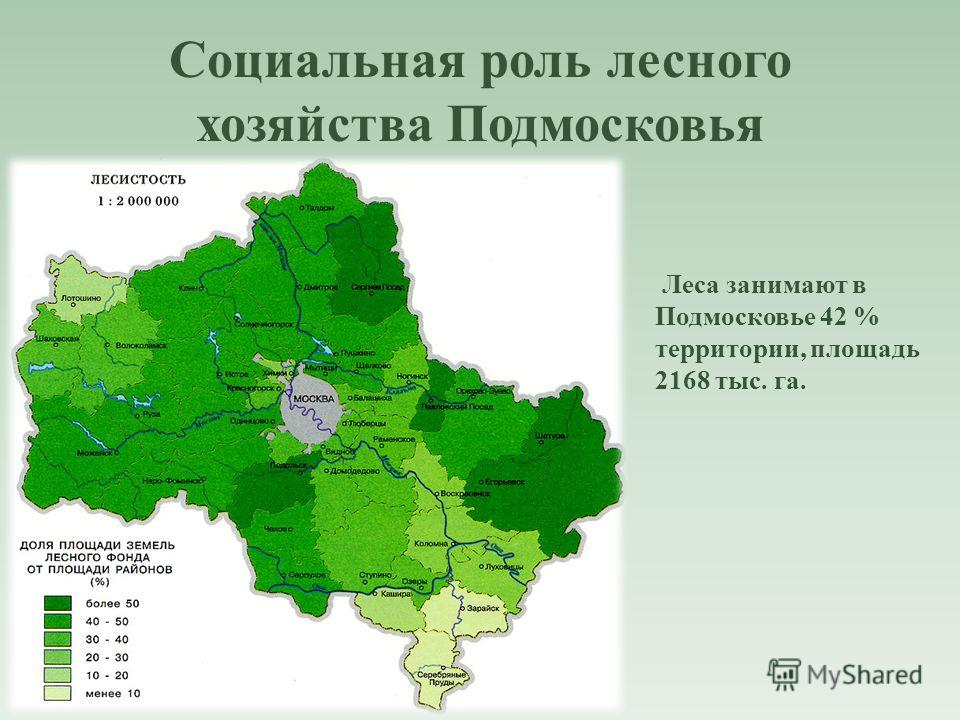 Социальная роль лесного хозяйства Подмосковья Леса занимают в Подмосковье 42 % территории, площадь 2168 тыс. га.
