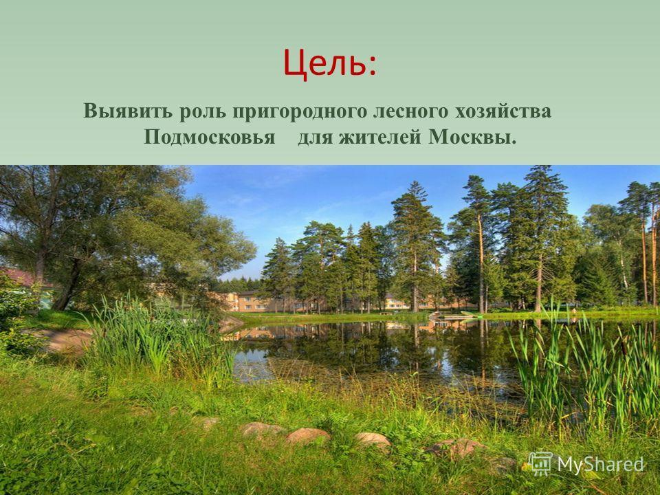 Цель: Выявить роль пригородного лесного хозяйства Подмосковья для жителей Москвы.