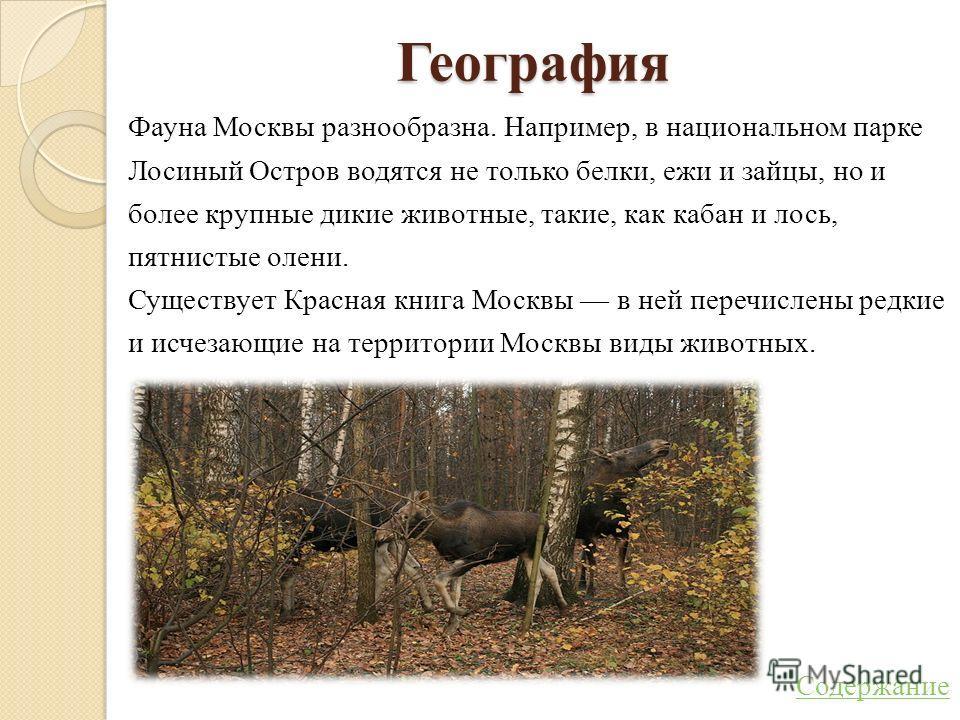 География Фауна Москвы разнообразна. Например, в национальном парке Лосиный Остров водятся не только белки, ежи и зайцы, но и более крупные дикие животные, такие, как кабан и лось, пятнистые олени. Существует Красная книга Москвы в ней перечислены ре
