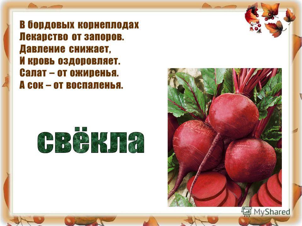 В бордовых корнеплодах Лекарство от запоров. Давление снижает, И кровь оздоровляет. Салат – от ожиренья. А сок – от воспаленья.