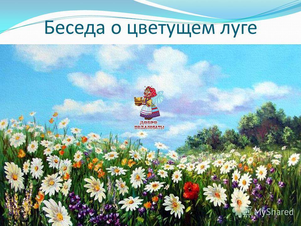 Картинки цветущего луга весной