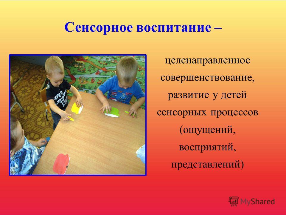 Сенсорное развитие ребёнка - это развитие восприятия и формирование представлений о внешних свойствах предметов: их форме, цвете, величине, положении в пространстве, запахе, вкусе и т.д. Значение сенсорного развития в раннем и дошкольном возрасте тру