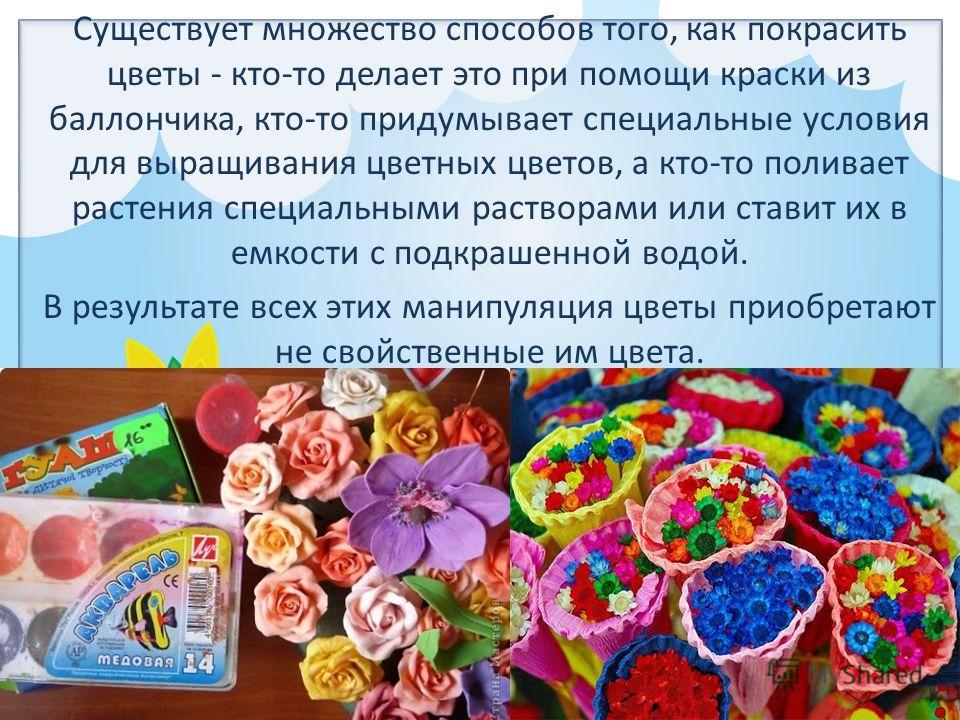 FokinaLida.75@mail.ru Существует множество способов того, как покрасить цветы - кто-то делает это при помощи краски из баллончика, кто-то придумывает специальные условия для выращивания цветных цветов, а кто-то поливает растения специальными раствора