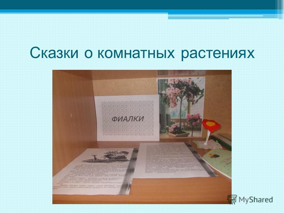 Сказки о комнатных растениях