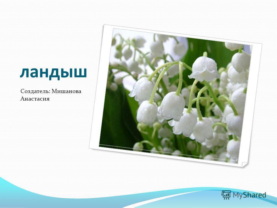 ландыш Создатель: Мишанова Анастасия