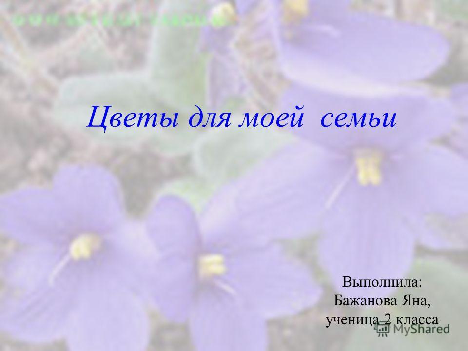 Цветы для моей семьи Выполнила: Бажанова Яна, ученица 2 класса