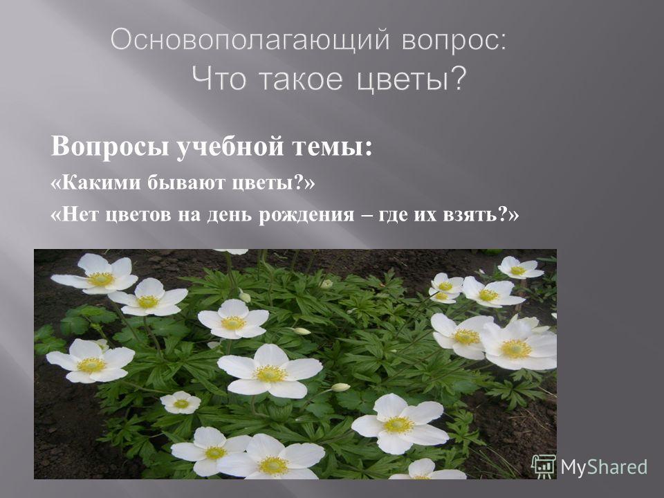 Основополагающий вопрос: Что такое цветы? Вопросы учебной темы: «Какими бывают цветы?» «Нет цветов на день рождения – где их взять?»
