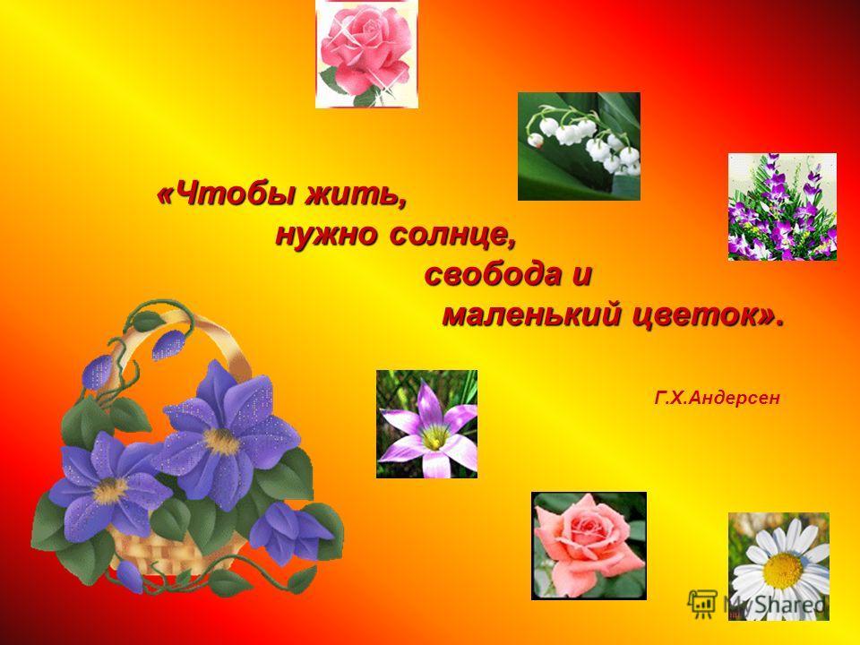 «Чтобы жить, нужно солнце, свобода и маленький цветок». нужно солнце, свобода и маленький цветок». Г.Х.Андерсен