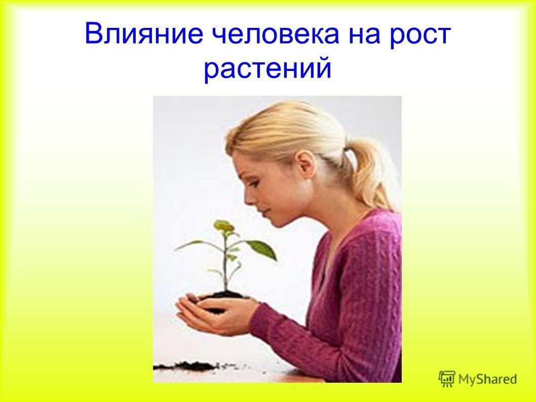 Влияние человека на рост растений