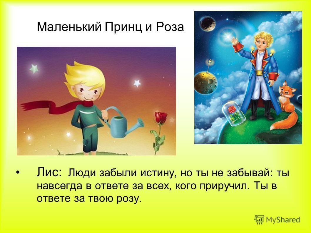 Маленький Принц и Роза Лис: Люди забыли истину, но ты не забывай: ты навсегда в ответе за всех, кого приручил. Ты в ответе за твою розу.
