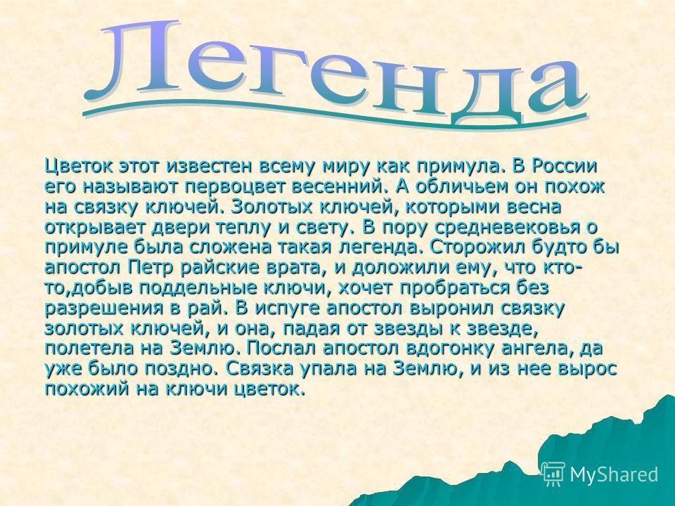 Цветок этот известен всему миру как примула. В России его называют первоцвет весенний. А обличьем он похож на связку ключей. Золотых ключей, которыми весна открывает двери теплу и свету. В пору средневековья о примуле была сложена такая легенда. Стор