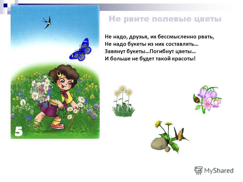 Не обижай лесных насекомых Ты их увидишь на пути – Не обижай, а отойди ! Без насекомых лес, друг мой И одинокий, и пустой…