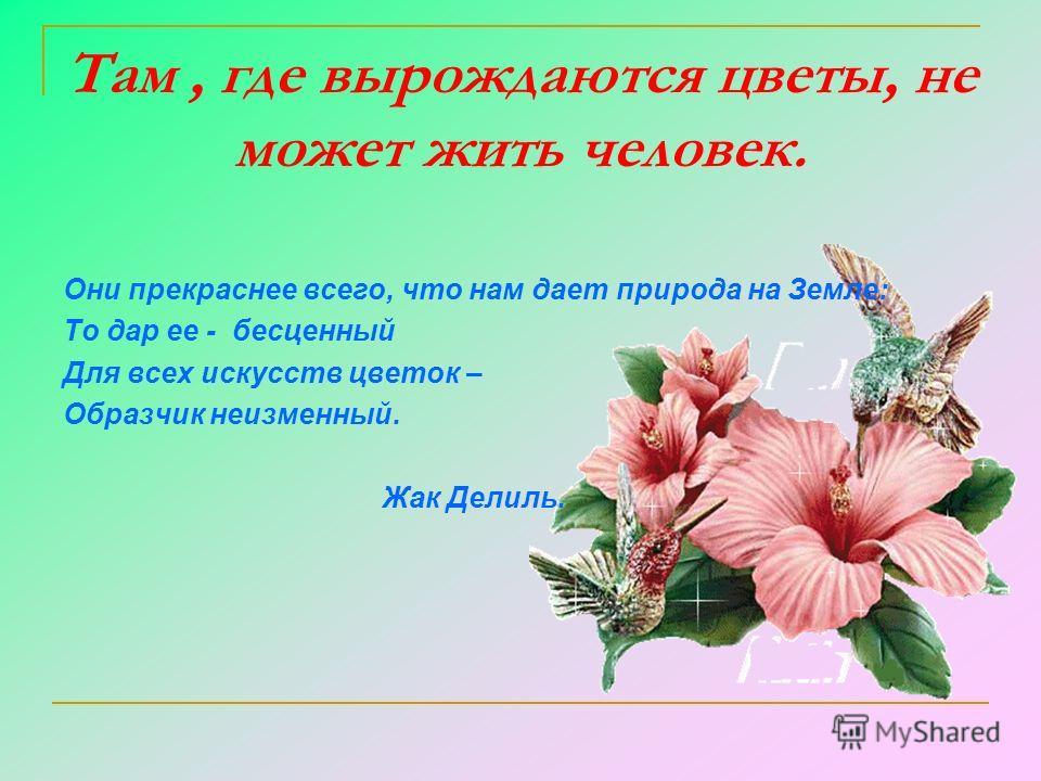 Там, где вырождаются цветы, не может жить человек. Они прекраснее всего, что нам дает природа на Земле: То дар ее - бесценный Для всех искусств цветок – Образчик неизменный. Жак Делиль.