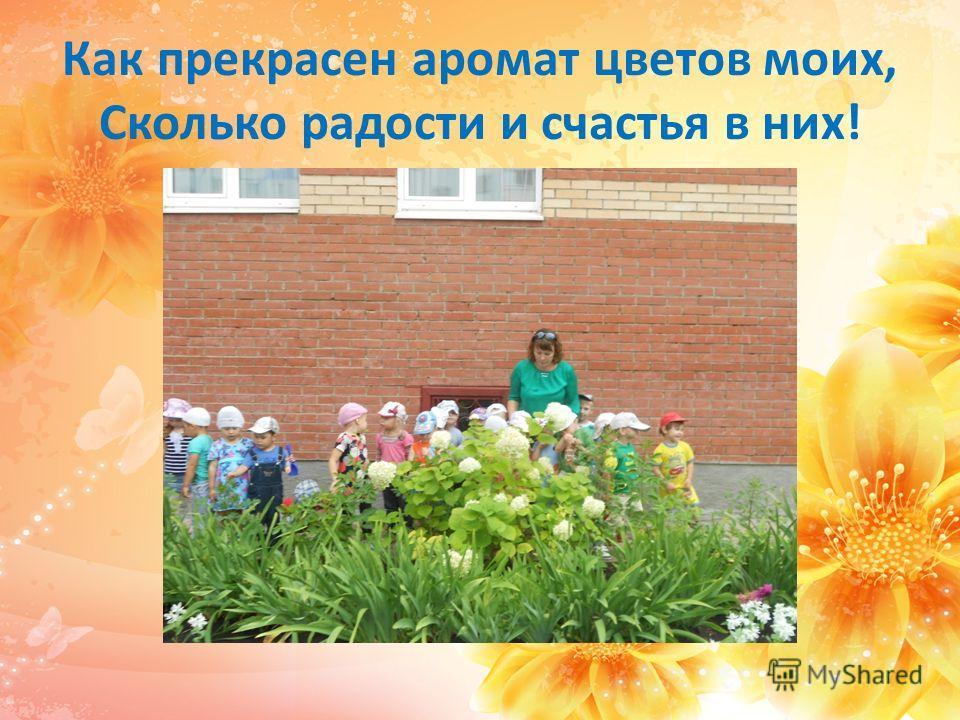 Солнца луч согреет нас, летом мы цветём для вас!