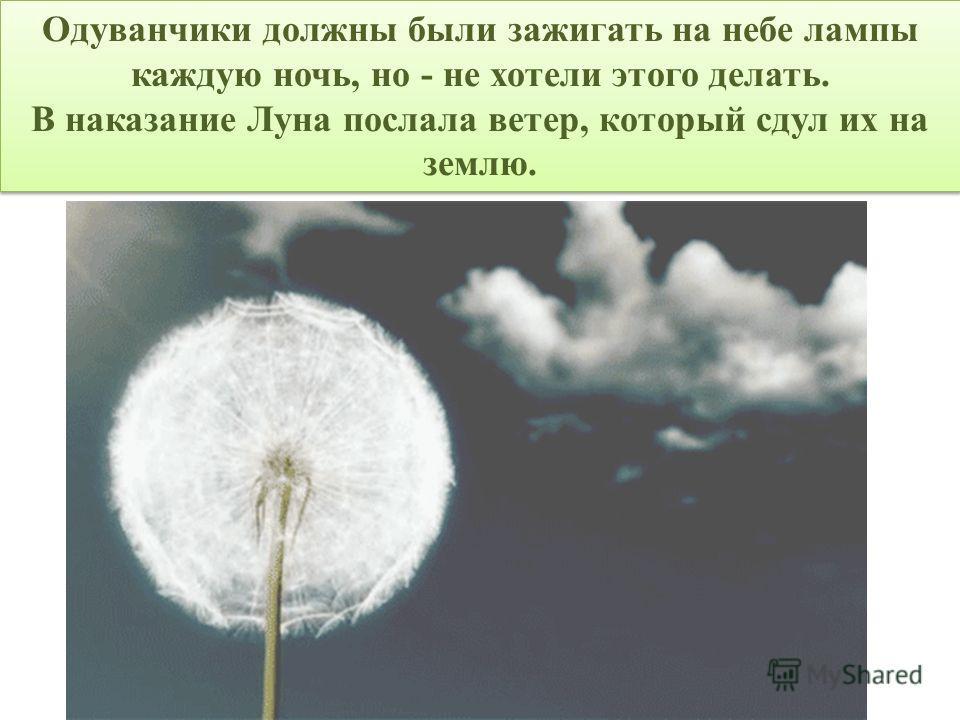 Одуванчики должны были зажигать на небе лампы каждую ночь, но - не хотели этого делать. В наказание Луна послала ветер, который сдул их на землю. Одуванчики должны были зажигать на небе лампы каждую ночь, но - не хотели этого делать. В наказание Луна