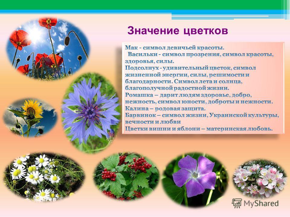 Значение цветков