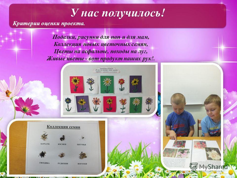 У нас получилось! Критерии оценки проекта. У нас получилось! Критерии оценки проекта. Поделки, рисунки для пап и для мам, Коллекция новых цветочных семян, Цветы на асфальте, походы на луг, Живые цветы - вот продукт наших рук!.