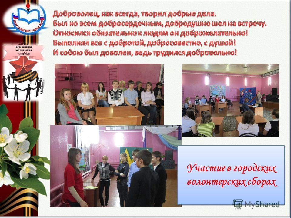 Участие в городских волонтерских сборах