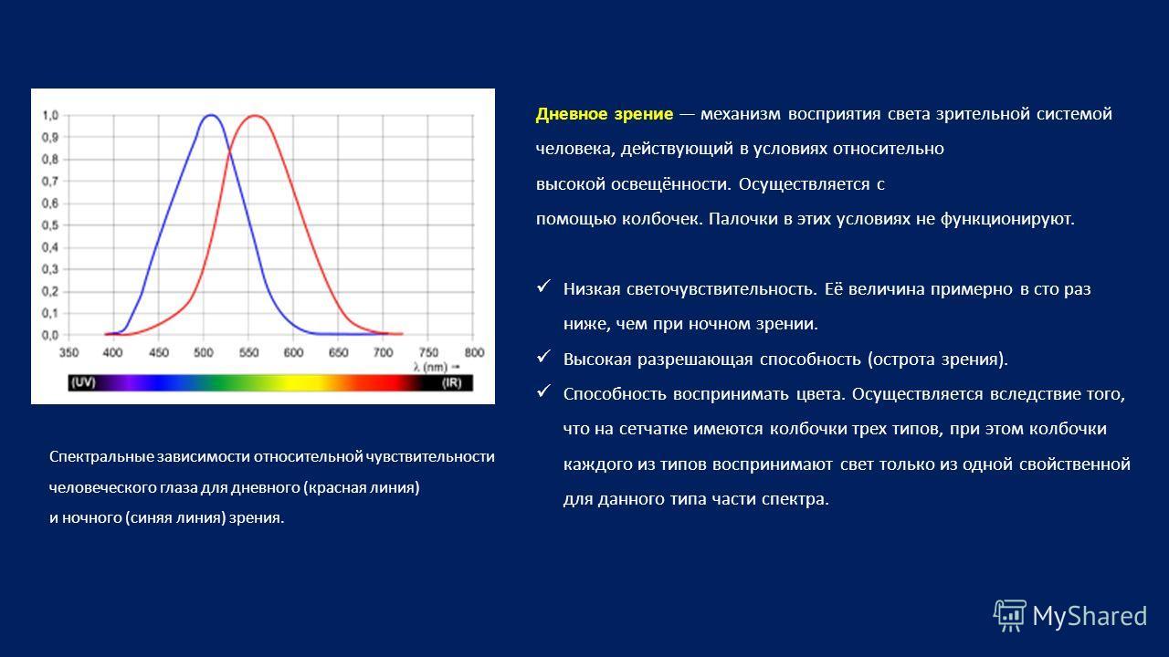 Спектральные зависимости относительной чувствительности человеческого глаза для дневного (красная линия) и ночного (синяя линия) зрения. Дневное зрение механизм восприятия света зрительной системой человека, действующий в условиях относительно высоко