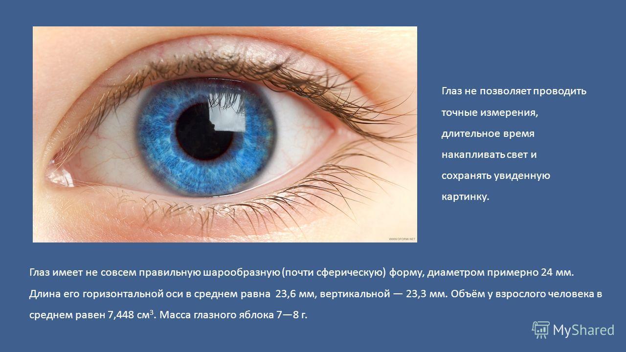Глаз имеет не совсем правильную шарообразную (почти сферическую) форму, диаметром примерно 24 мм. Длина его горизонтальной оси в среднем равна 23,6 мм, вертикальной 23,3 мм. Объём у взрослого человека в среднем равен 7,448 см 3. Масса глазного яблока