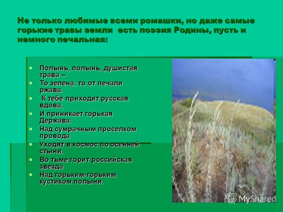 Не только любимые всеми ромашки, но даже самые горькие травы земли есть поэзия Родины, пусть и немного печальная: Полынь, полынь, душистая трава – Полынь, полынь, душистая трава – То зелена, то от печали ржава. То зелена, то от печали ржава. К тебе п