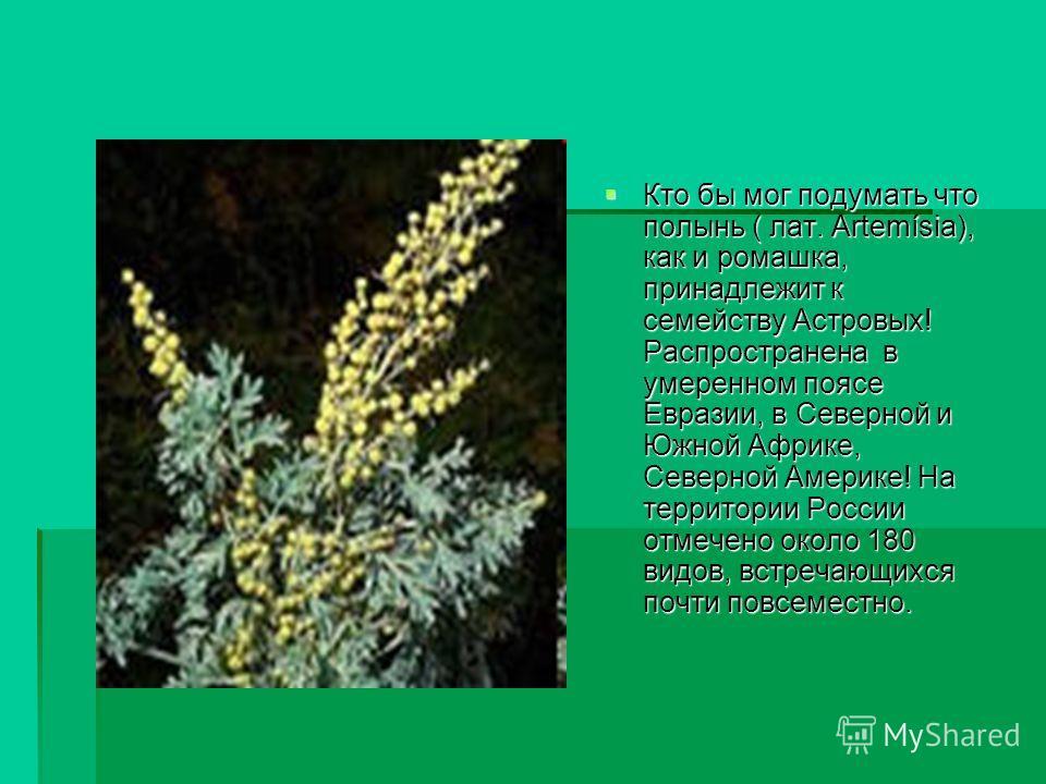 Кто бы мог подумать что полынь ( лат. Artemísia), как и ромашка, принадлежит к семейству Астровых! Распространена в умеренном поясе Евразии, в Северной и Южной Африке, Северной Америке! На территории России отмечено около 180 видов, встречающихся поч