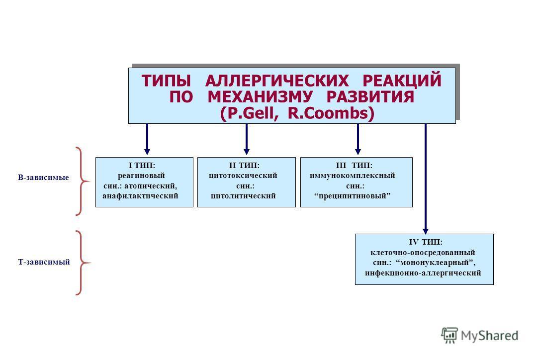 ТИПЫ АЛЛЕРГИЧЕСКИХ РЕАКЦИЙ ПО МЕХАНИЗМУ РАЗВИТИЯ (P.Gell, R.Coombs) I ТИП: реагиновый син.: атопический, анафилактический II ТИП: цитотоксический син.: цитолитический III ТИП: иммунокомплексный син.: преципитиновый IV ТИП: клеточно-опосредованный син