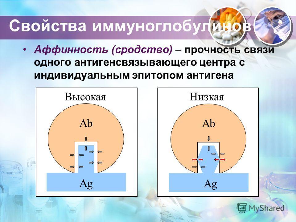 Свойства иммуноглобулинов Аффинность (сродство) – прочность связи одного антигенсвязывающего центра с индивидуальным эпитопом антигена Ab Ag Высокая Ab Ag Низкая
