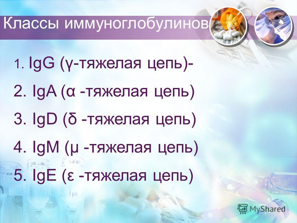 Классы иммуноглобулинов 1. IgG (γ-тяжелая цепь)- 2. IgA (α -тяжелая цепь) 3. IgD (δ -тяжелая цепь) 4. IgM (μ -тяжелая цепь) 5. IgE (ε -тяжелая цепь)