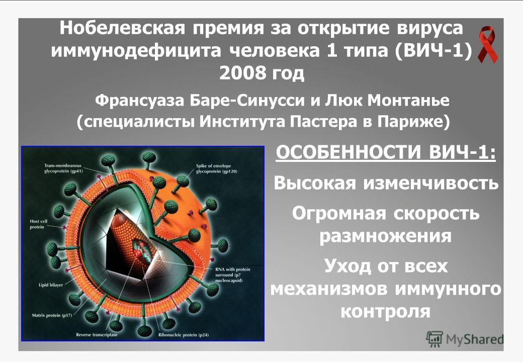 Нобелевская премия за открытие вируса иммунодефицита человека 1 типа (ВИЧ-1) 2008 год Франсуаза Баре-Синусси и Люк Монтанье (специалисты Института Пастера в Париже) ОСОБЕННОСТИ ВИЧ-1: Высокая изменчивость Огромная скорость размножения Уход от всех ме
