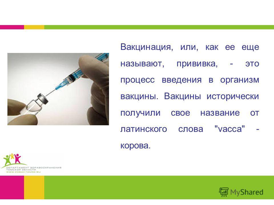 Вакцинация, или, как ее еще называют, прививка, - это процесс введения в организм вакцины. Вакцины исторически получили свое название от латинского слова vacca - корова.