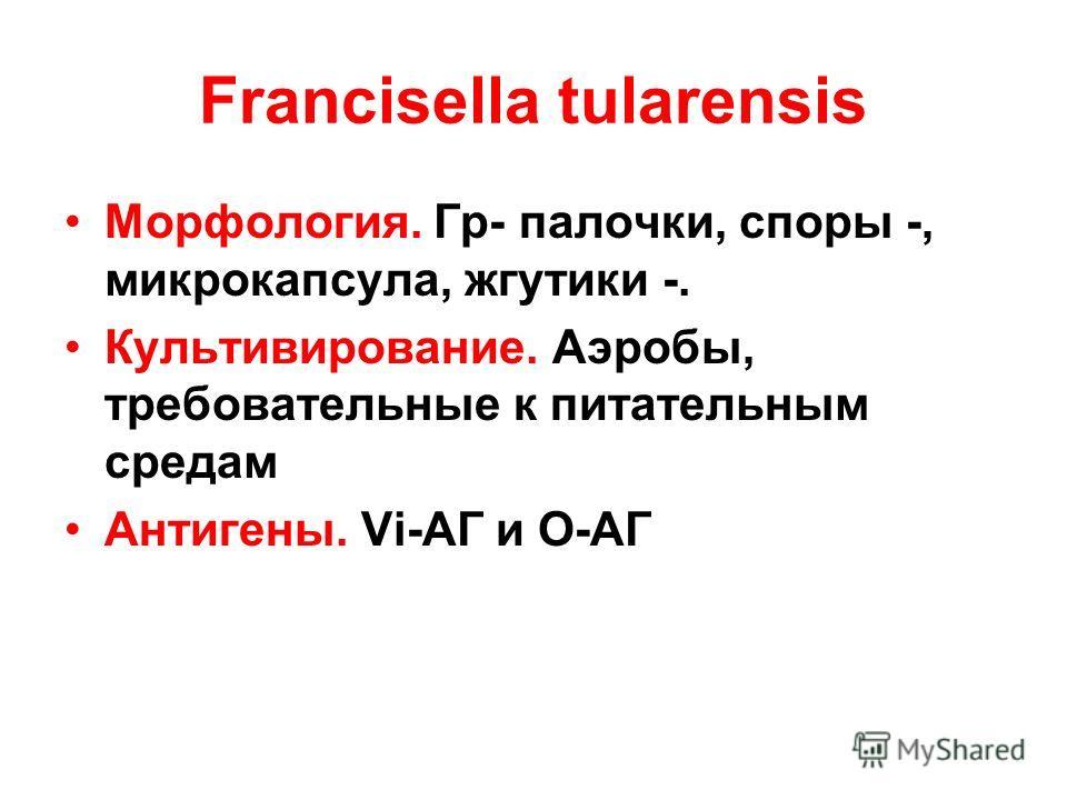 Francisella tularensis Морфология. Гр- палочки, споры -, микрокапсула, жгутики -. Культивирование. Аэробы, требовательные к питательным средам Антигены. Vi-АГ и О-АГ
