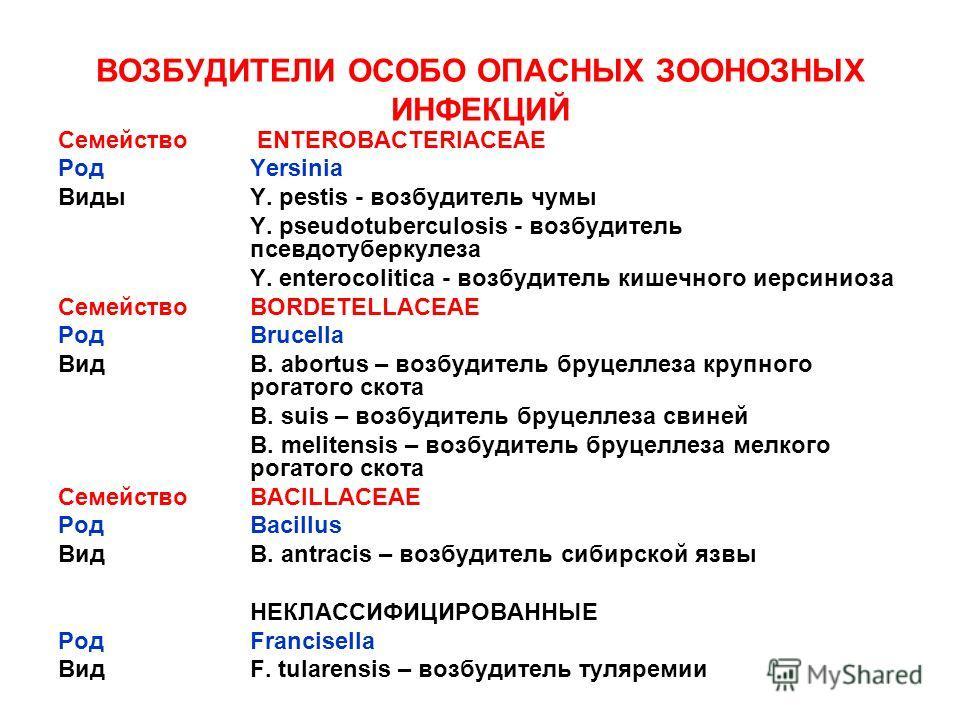ВОЗБУДИТЕЛИ ОСОБО ОПАСНЫХ ЗООНОЗНЫХ ИНФЕКЦИЙ Семейство ENTEROBACTERIACEAE РодYersinia ВидыY. pestis - возбудитель чумы Y. pseudotuberculosis - возбудитель псевдотуберкулеза Y. enterocolitica - возбудитель кишечного иерсиниоза СемействоBORDETELLACEAE