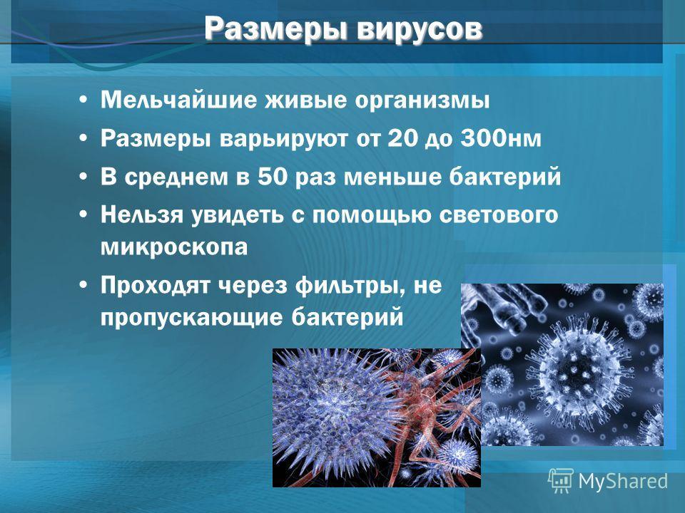 Размеры вирусов Мельчайшие живые организмы Размеры варьируют от 20 до 300 нм В среднем в 50 раз меньше бактерий Нельзя увидеть с помощью светового микроскопа Проходят через фильтры, не пропускающие бактерий
